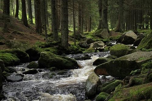 Parque-Nacional-de-Sumava