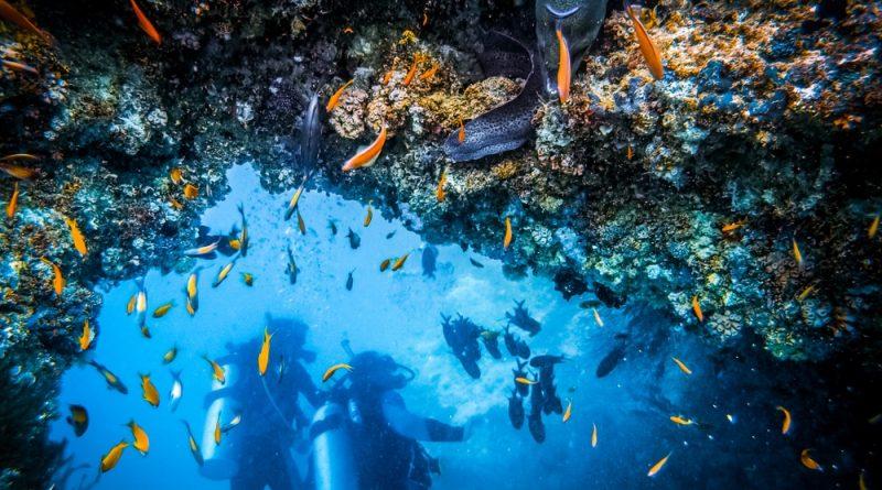 Los 9 mejores lugares para bucear en Cabo Verde